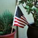 American flag in potted plant
